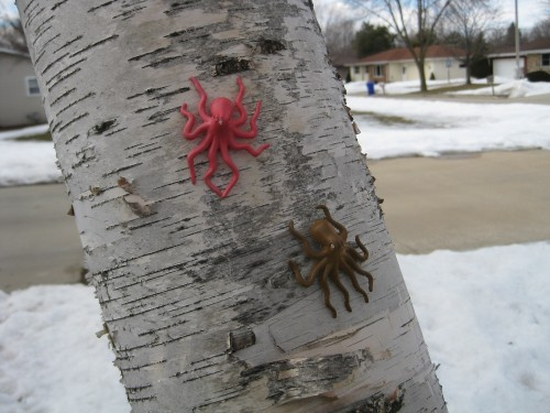 Pair of paper birch tree octopi